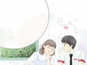 顾先生的小娇妻小说_(苏若情顾闻)完整版阅读