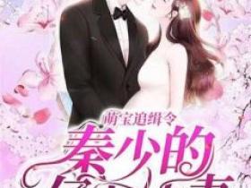 小说萌宝追缉令:秦少的亿万娇妻在线阅读
