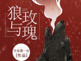 【抖音】小说狼与玫瑰无广告阅读