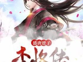 盛唐逆子:李恪传小说无广告阅读