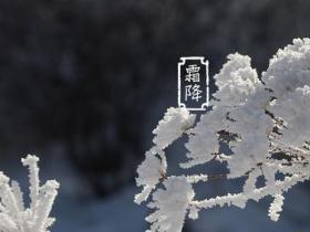 2021年今日霜降是几点几分 霜降吃什么